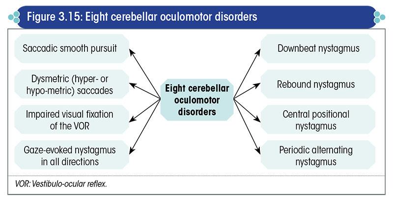 Eight cerebellar oculomotor disorders