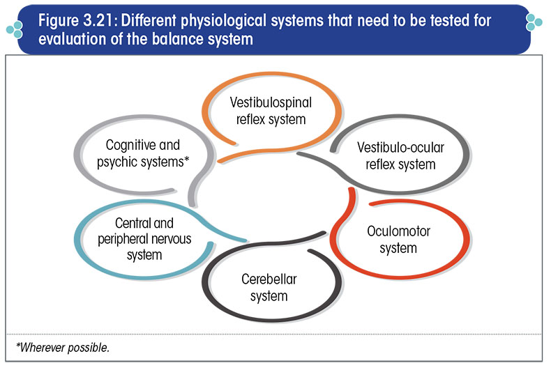 Different physiological system that need to be tested for evaluation of the balance system