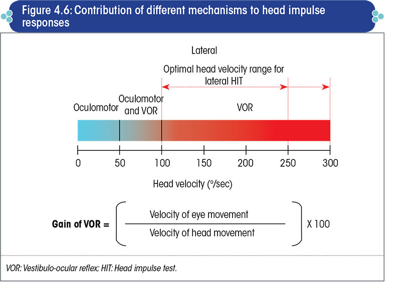 Contribution of different mechanisms to head impulse responses