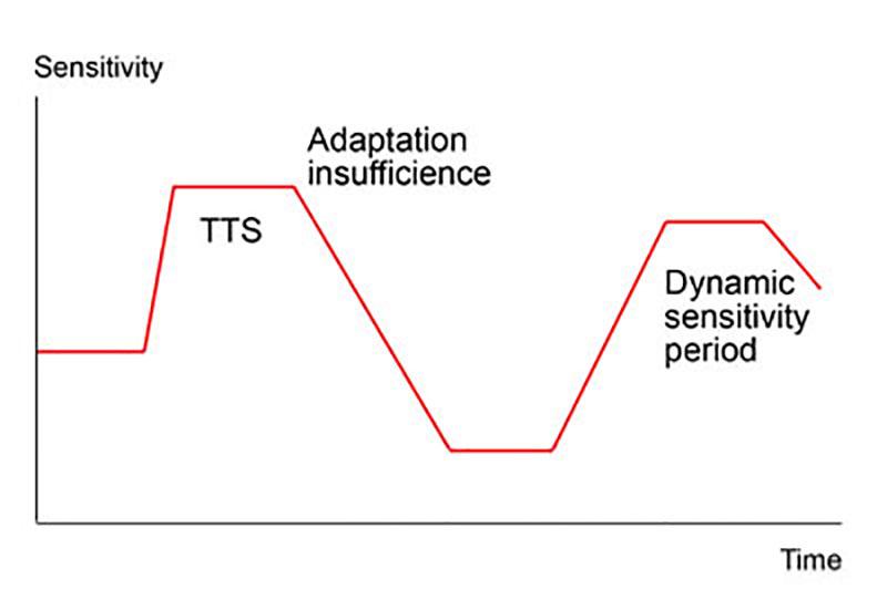 Dynamics of the vestibular threshold